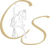 Christine Schmiedel Logo